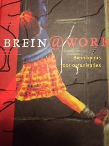 Hersenen en creativiteit
